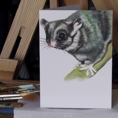 Leadbeater's Possum greeting card Australian wildlife art cute forest fairy