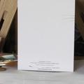 Leadbeater's Possum greeting card Australian wildlife art cute forest fairy