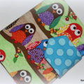 Crayon Wallet - owls on branches, purple and green