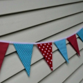 Aqua and Red Bunting