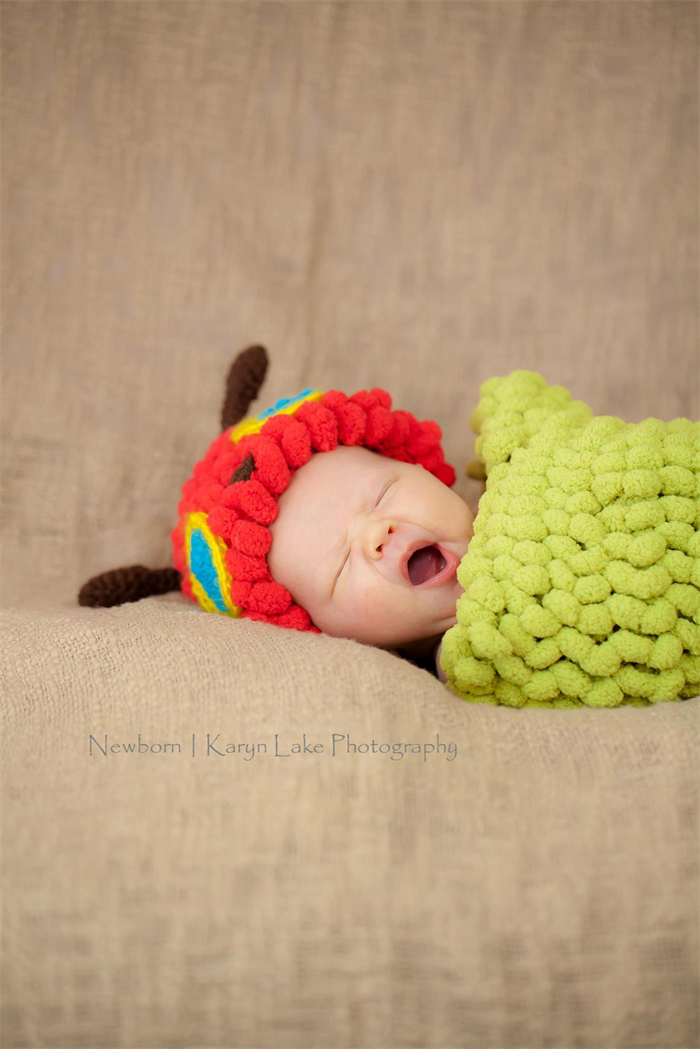 Very Hungry Caterpillar Cocoon 0 3mo Photo Prop Funkyhooker