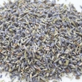 Lavender Sachet - Set of 2 (Bird)