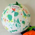 Balloon Ball Cover - Great present, premium range, Fish Friends