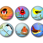 Magnets - Funky Birds - set of 6 fridge magnets