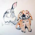 Custom Pet Portrait- Original hand drawn, watercolour painting