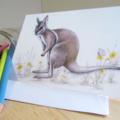 Bridled Nail-Tail Wallaby  greeting card Australian wildlife art