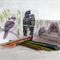 Any 3 Greeting Cards for $10... Australian wildlife illustrations, animals, bird