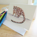 Spotted-tail Tiger Quoll  greeting card Australian wildlife art