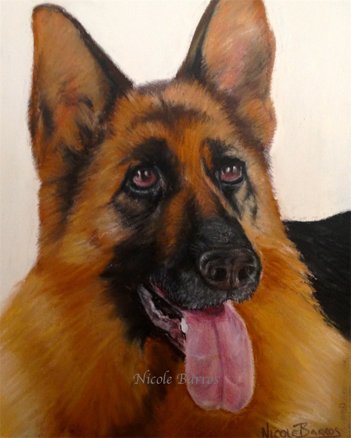 German Shepard Dog Pastel Painting Print Paintings