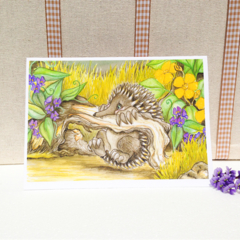 Echidna blank greeting card, australian animal card 5x7 folded art card