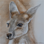"Kangaroo Joie, Baby Animals, PRINT 8""x8"" Watercolour painting, Nursery"