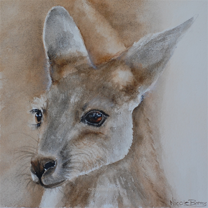 Kangaroo Joie Baby Animals Print 8 X8 Watercolour Painting Nursery