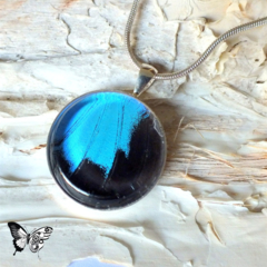 Ulysses Butterfly Pendant - REAL blue Butterfly wing