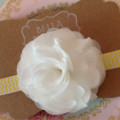 White & Yellow Chiffon Rose Headband.  