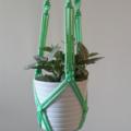 """""""Elwood"""" Macramé Pot/Plant Hanger"""