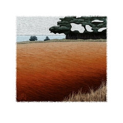 West of Wynyard, Tasmania #6 - Limited Edition Print