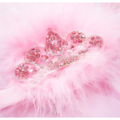 Baby Headband - Princess Tiara Pink Feather NEWBORN Photo Prop - Zara BB