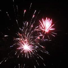 Celebration 6