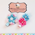 Pretty Pink/Blue Clips
