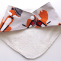 Mr Fox Baby Shoes & Bandanna Bib Gift Set