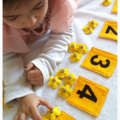 Early Math Learning Toy Set- Fabric Number Cards and Flower Counters