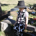 Cow Girl Vest size 2-3 Brown & White Cow Print