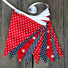 Navy & Red Bunting