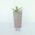 Concrete Duo - Tealight Candle Holder & Succulent Planter Set - Urban Decor
