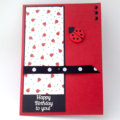 Gift Card Pocket Birthday Card