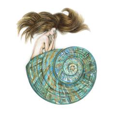 Jade Turbo Sea Shell Mermaid Art Print Colour Pencil Drawing Tattoo 8x10