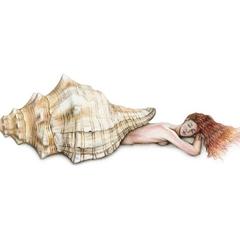 Triton Shell Mermaid Art Print Colour Pencil Drawing 8x10