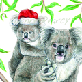 Christmas Card with Koala family, Mum, Dad, child, decorations, tree