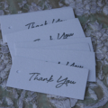 12 Thank You Tags  Favour Tags Party Tags Florist Tags Biscuit Gift Tags