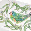 Swift Parrot greeting card, Australian bird, green rainbow colours, wildlife art