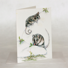 Mountain Pygmy Possum greeting card, Australia wildlife art,grasshopper, berries