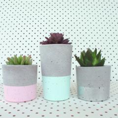 Concrete Trio - Succulent Planter Set - Urban Decor