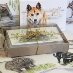 Australian ANIMALS GIFT BOX of 8 greeting cards - Unique Mammals set