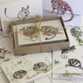 Australian THREATENED ANIMALS GIFT BOX of 8 greeting cards - wildlife drawings
