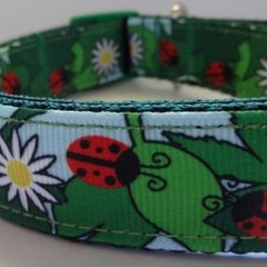 25mm Lady Bug Collar