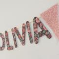 'OLIVIA' Name Bunting