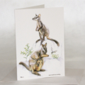 Brush-tailed Rock Wallabies greeting card, wildlife art mother baby