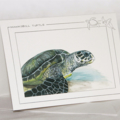 Hawksbill Turtle greeting card Australian wildlife art, sea green grey blue