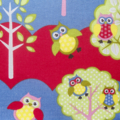 SALE - Kids Apron - boys/girls Owls lined apron - double pocket