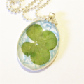 Real 4 Leaf Clover Pendant with Necklace