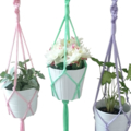 Set of 3 Macramé Pot/Plant Hangers - Pink, Lavender, Mint