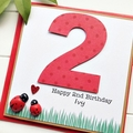 Any Age Birthday Personalised ladybug card children kids custom 1 2 3 4 5 6 7 8