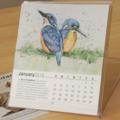 2016 Desk Calendar Australian threatened species - animals birds wildlife art