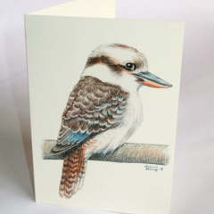 Kookaburra greeting card Australian wildlife art