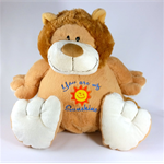 Rory Lion Buddy, Wedding Keepsake, Pyjama Bag, or just for Cuddling.