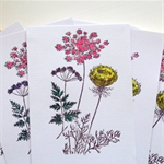 Greeting Card Set| Greeting Card Packs|Floral Printed Cards|5 Pack| Blank|SET001